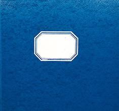 Tilikirja 9471050 (10 tiliä, 96 sivua, 355x335 mm, sininen kiiltopahvik.)