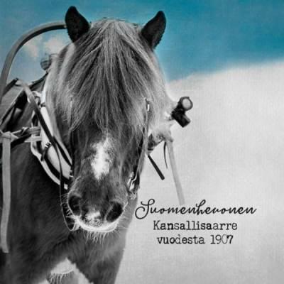 """Magneetti """"Suomenhevonen kansallisaarre vuodesta 1907"""". Anu Kovalainen"""